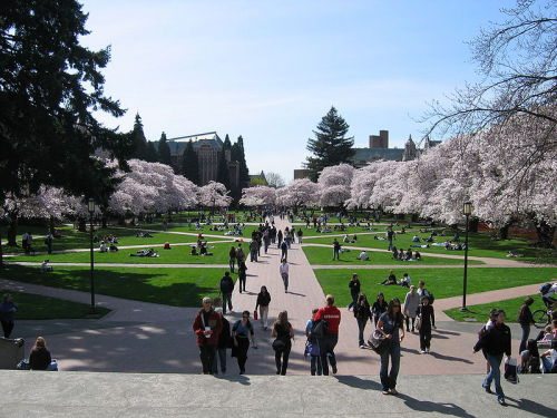 Per Request: University of Washington's Quad. Seattle, Washington, United States.