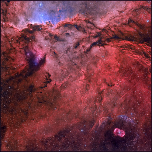 NGC 6188 and NGC 6164 Image Credit & Copyright: Kfir Simon Explanation: Fantastic shapes lurk in clouds of glowing hydrogen gas in NGC 6188, about 4,000 light-years away. The emission nebula is found near the edge of a large molecular cloud unseen at visible wavelengths, in the southern constellation Ara. Massive, young stars of the embedded Ara OB1 association were formed in that region only a few million years ago, sculpting the dark shapes and powering the nebular glow with stellar winds and intense ultraviolet radiation. The recent star formation itself was likely triggered by winds and supernova explosions, from previous generations of massive stars, that swept up and compressed the molecular gas. Joining NGC 6188 on this cosmic canvas is rare emission nebula NGC 6164, also created by one of the region's massive O-type stars. Similar in appearance to many planetary nebulae, NGC 6164's striking, symmetric gaseous shroud and faint halo surround its bright central star at the lower right. The field of view spans about two full Moons, corresponding to 70 light years at the estimated distance of NGC 6188. (via Astronomy Picture of the Day)
