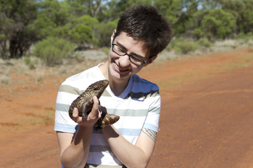 nemertea:  Here, have a gratuitous picture of me and a shingleback.  yes… yes to all of this.