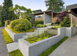 homedesigning:  (via 5 Modern Landscaping Essentials for a Stylish Yard)
