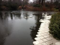 The ice is off the pond! Outside skies are grey but inside the Home and Studio it is bright and cheerful. The rain on the copper roof sounds beautiful.