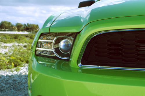 Eye of the mantis Starring: '13 Ford Mustang (by Brett Levin Photography)