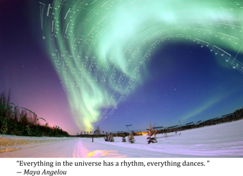 """Everything in the universe has a rhythm…"" Maya Angelou"