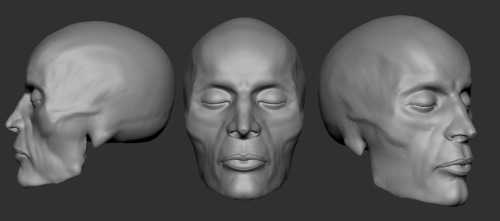 Face sculpt from European male skull, about 30-40 minutes Skulls, about 2-4 hours each.  from left to right European Male Skull, Australian Aboriginal Skull, Bound Skull