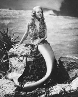 mermaids-and-anchors:  Miranda(1948)