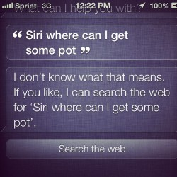 That's not what I said Siri! I said pie!