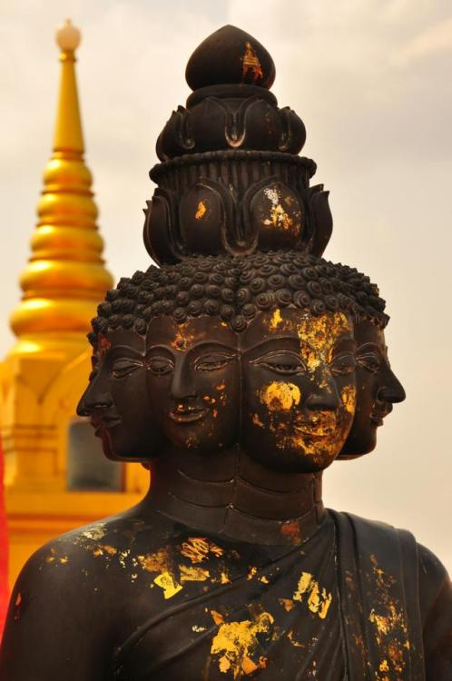 buddhabe:  witness to all suffering