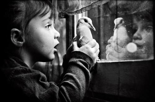 de-salva:   A girl with a dove by Jorris Martinez (France)