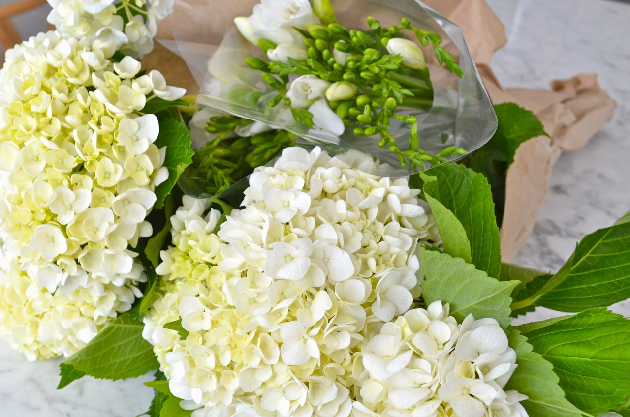 dublindust:     Freesias and hydrangeas