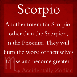 scorpioseason:  #Scorpio will burn the worst of themselves to rise and become greater  god why can't i live up to my sun sign's badassery?
