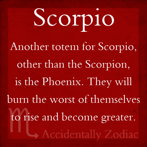 scorpioseason:  #Scorpio will burn the worst of themselves to rise and become greater