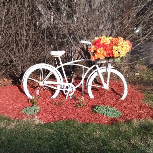 #spring is here! #antique #bicycle #flowers  (at Clifton, NJ)