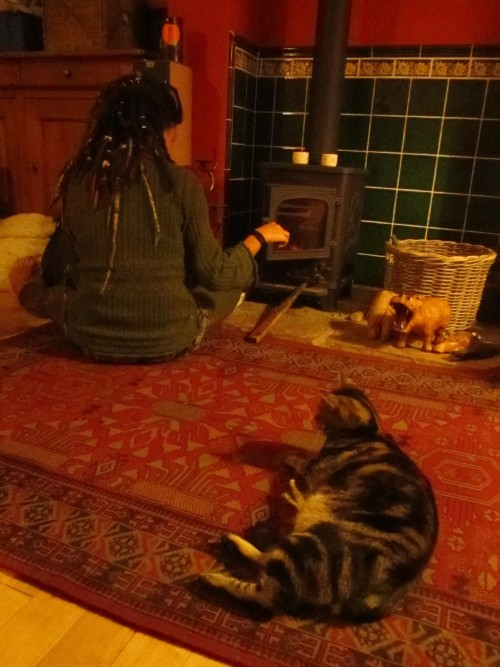 Cheeky kitty cats and cosy fire time :)