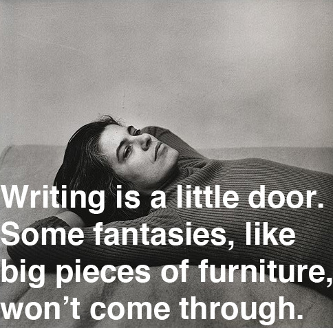 Susan Sontag, born 80 years ago today, on writing.