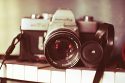 cristalonell:  Two things I looove the most, photography and music