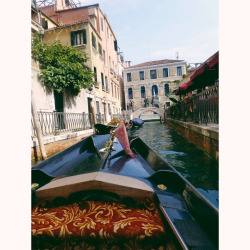 gypsyfolly:  lumina-ae:  lumina-ae:  I want to go back to Venice so badly!  omg it just keeps getting more notes this is ridiculous and totally unexpected wow   x