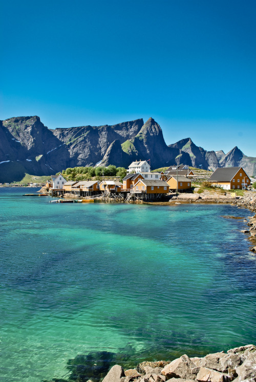 sewaar:  // // travelingcolors:  Sakrisøy, Lofoten Islands | Norway (by Chris Zielecki)