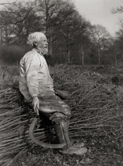 Farmer, Sussex, 1932 E.O. Hoppé