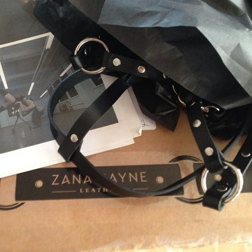 cultofcali:  Squeeeee! My custom @zanabayneleather harness is here!!! #lifeinthecult #leather #harness #custom #zanabayne (at the altar)