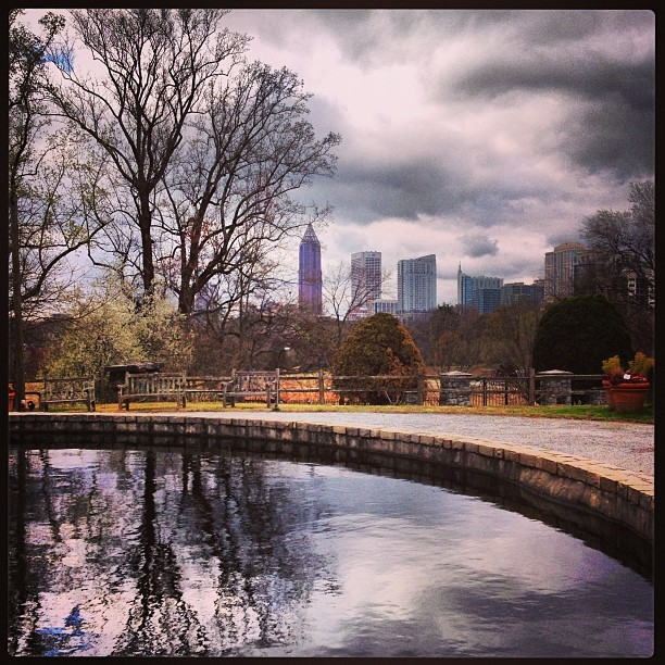 hollie50:  View of Midtown Atlanta (at Atlanta Botanical Garden)