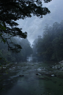 in-stone:  Milford Track, New Zealand