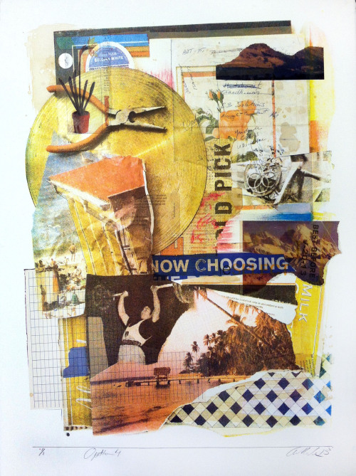 Option 4 Silkscreen, Collage 2013