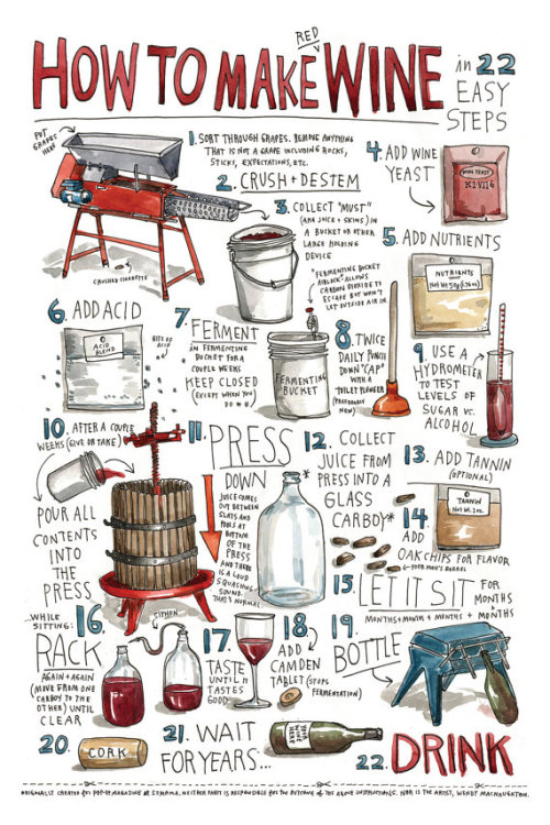 explore-blog:  How to Make Wine – an illustrated guide by the one and only Wendy MacNaughton.  Bullshit.  Wine is easy.   I bag coolaid.  I crust from bread.  Mix in container.  wait 3 days.  Wine. Wait 1 week.  Brandy. Wait 1 month.  Vodica.