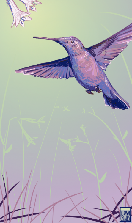 =Astanine asked for a Purple Hummingbird flying.. well it's a bit more purple than intended but I rather like it XD I'm still accepting orders for $3 birds till new years :D