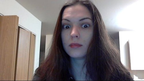 I got a better webcam. I feel this was a mistake.