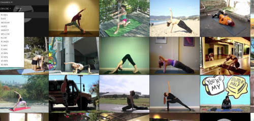 Get fit with unlimited online yoga for only $8 a month!  www.bsy.tv