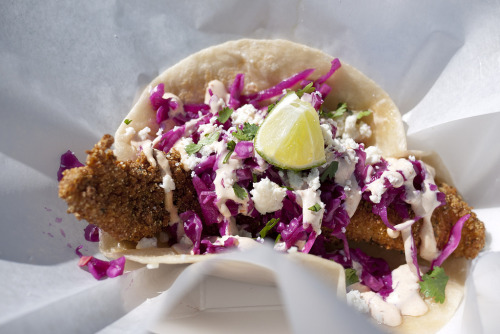 e-d-g-e-s:  iloveaustin:  Fried Catfish Taco from Oh My Taco Yelp  yummm