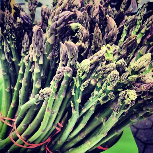 quinciple:  We spotted the first asparagus of the season at the Daj Hammararskold Greenmarket up by the UN today at Lani's Farm. lovagemetender:  Down @unsqgreenmarket everyone is going crazy for ramps. Meanwhile, uptown we've discovered the first asparagus of the season at Lani's farm. #springishere (at Dag Hammarskjold Greenmarket)