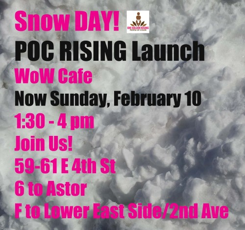 It's a Snowy Day…. HowDoYouRise? We are rising now on Sunday, February 10th at the Wow Cafe, at 1:30 pm and tell us How You Rise! www.fb.com/pocrising Join us!