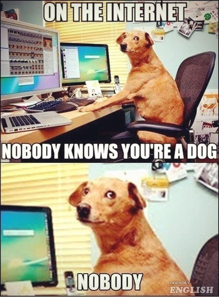 WHAT IF IT'S REALITY AND PEOPLE I COMMUNICATE WITH ARE DOGS?