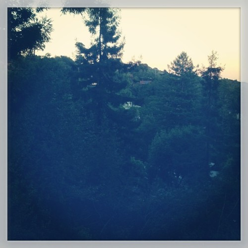 #surburbs are cool at dusk (at Mill Valley)