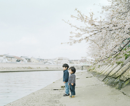 dreams-of-japan:  river's edge by Hideaki Hamada on Flickr.