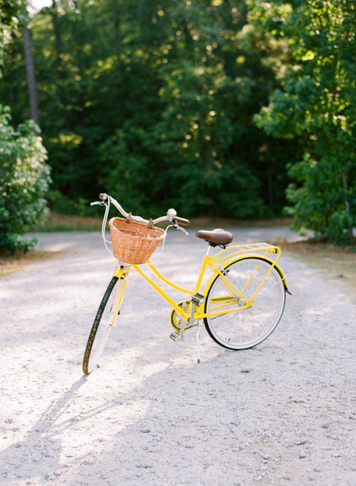 all-things-bright-and-beyootiful:  ali harper photography