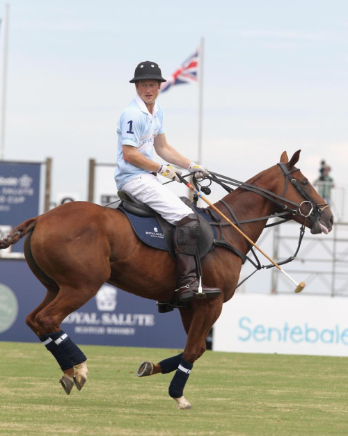 If you look good on a polo pony… trust me, you'll 'score' in life!