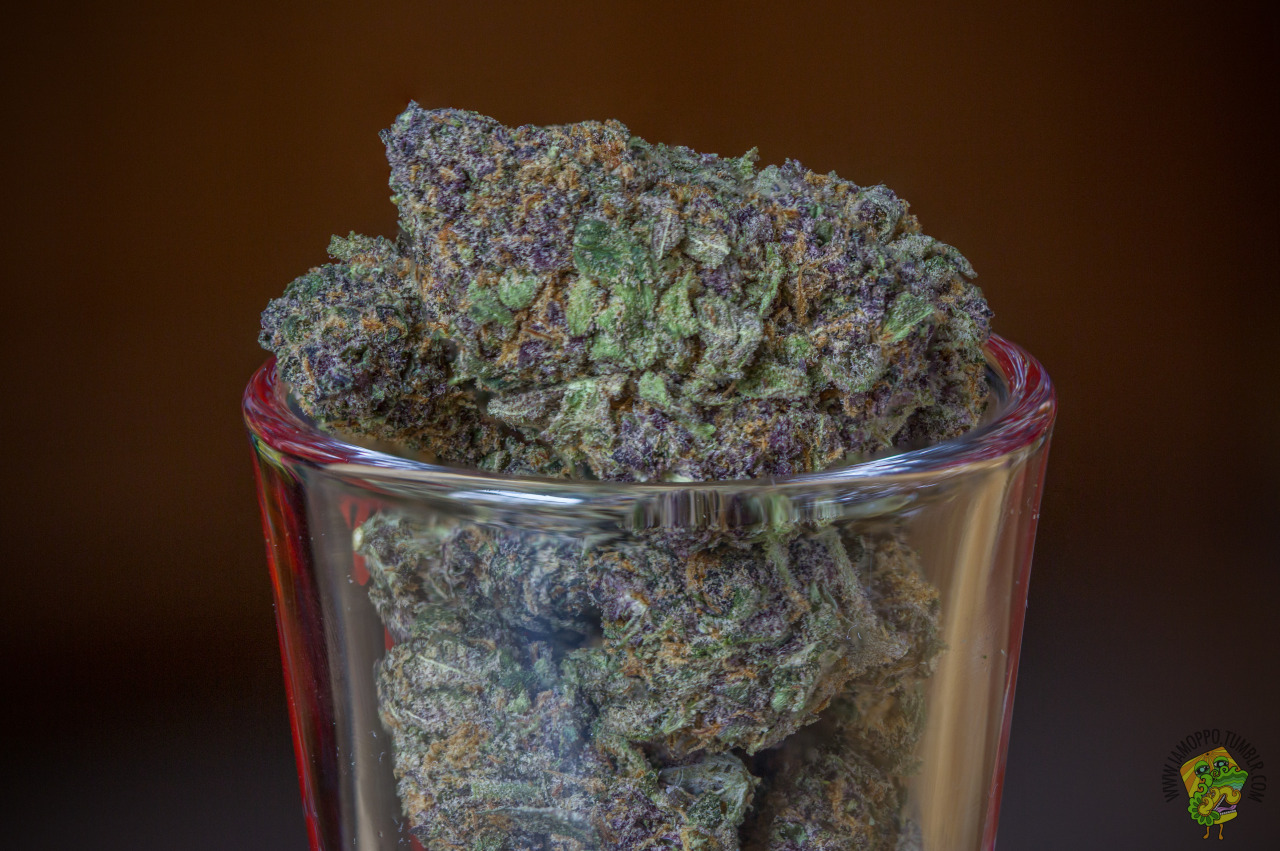 photography weed ganja cannabis kush pot dank 420 purple 2k