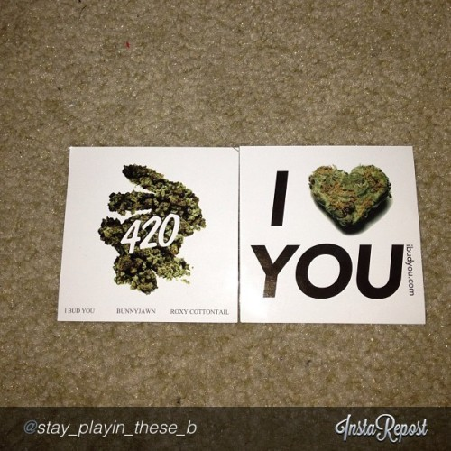 "#420 gets better and better when i see #ibudyou stickers in your photos!  by @stay_playin_these_broads ""I bud you stickers #420 #potstickers #stickers #ibudyou #ganja #reefer #instabud #instaweed #picoftheday #photooftheday #l4l #f4f"" via @InstaReposts"