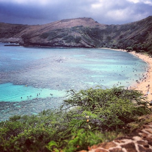Swimming with the fish today. (at Hanauma Bay Nature Preserve)