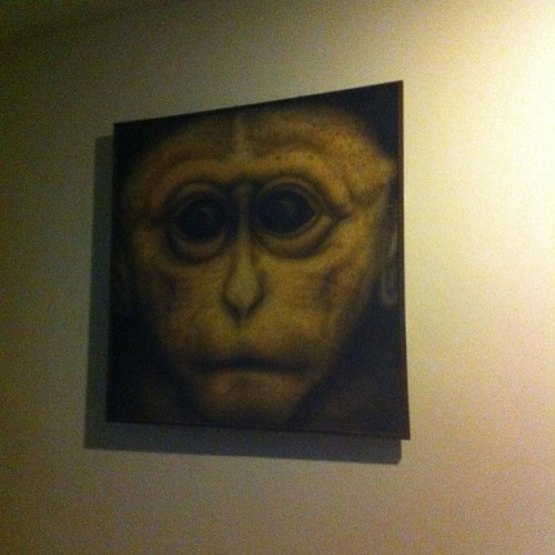 This is too much!! Even painting oso monkey!! 🙊🙉🙈