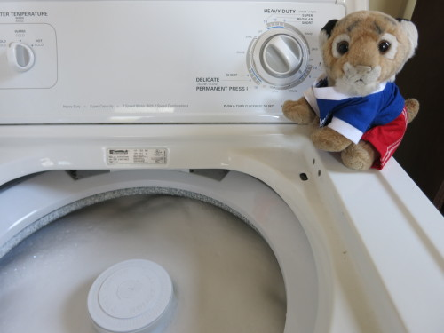 """I just realized my washing machine has been washing itself for five minutes!  Urgh, where's my dirty laundry?!"" - (c) Harry Follow my freshly laundered adventures at www.facebook.com/adventuresofharrysanfran"
