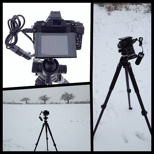 It's Snowing Again… expect more photos of snow #diptic #omd #em5 #olympus