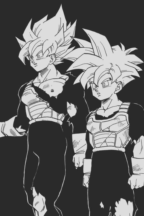Anime Submission Dragon Ball Z Dragon Ball Vegeta Son Goku Trunks Son Gohan Super Saiyan Akira Toriyama Saiyan Mirai Trunks Future Trunks Cell Saga Cell Games Saiya Jin Super Saiya Jin
