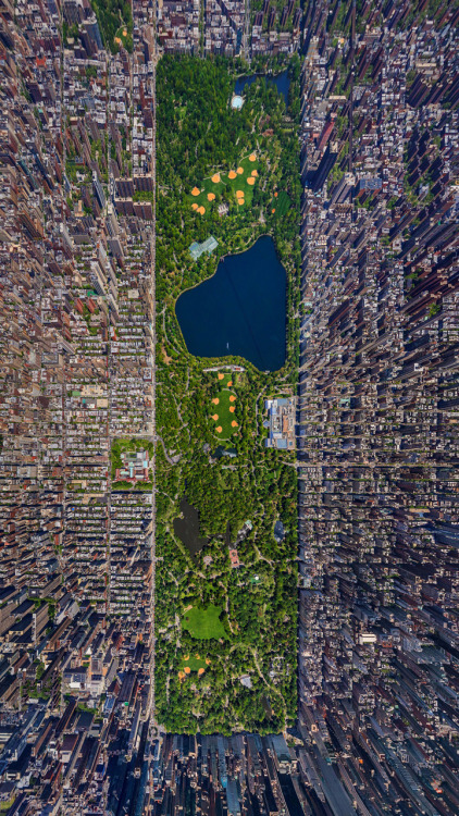shinypapercrowns:  shigaretto:  when you're in central park it doesn't seem like it's that big but then i see shit like this and wow  I've been to New York City three times and haven't been to Central Park yet.  T-19 days until NYC!