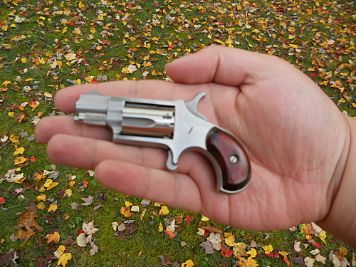 An old classic, My .22 long rifle NAA Mini Revolver.
