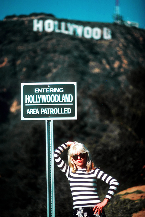 vintagegal:  Debbie Harry in Hollywood, 1979