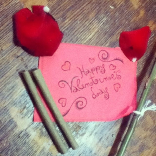bluedaisyboo:  Happy valentine day!