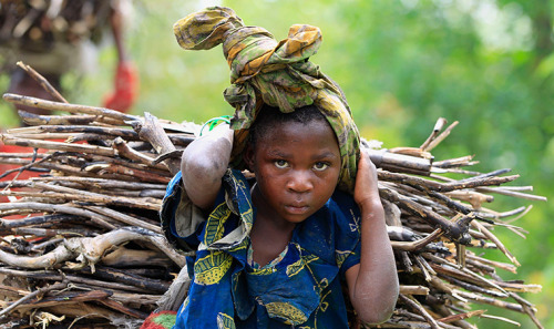 fotojournalismus:  A Congolese girl carries firewood, collected from a forest, in Bunagana town on May 11, 2013. [Credit : James Akena/Reuters]